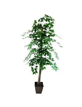 Lcg Florals Ficus Tree In Planter by Lcg Florals