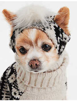 Abo Pet Beanie by American Eagle Outfitters