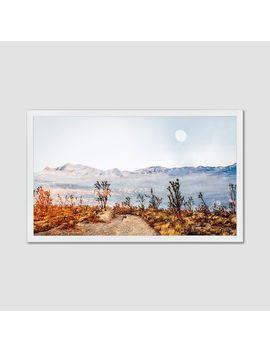 Minted For West Elm   Desert Super Moon by West Elm