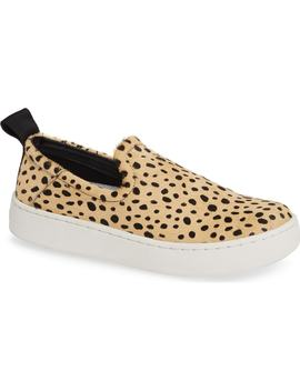 Tag Slip On Sneaker by Dolce Vita