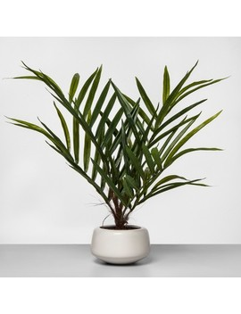 "27""-x-16""-artificial-potted-palm-green_white---project-62 by shop-collections"