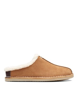 Apollo Sail   Womens Slippers   Cognac by Clarks