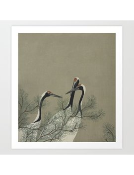 Japanese Red Crowned Crane Art Print by