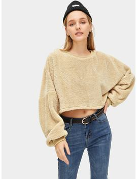 Drop Shoulder Crop Teddy Sweatshirt by Romwe
