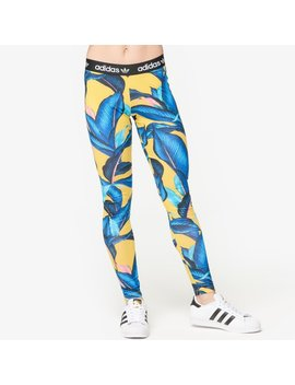 Adidas Originals Farm Big Leaf Leggings by Lady Foot Locker