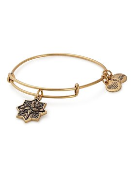 Healing Love Charm Bangle Bracelet by Alex And Ani