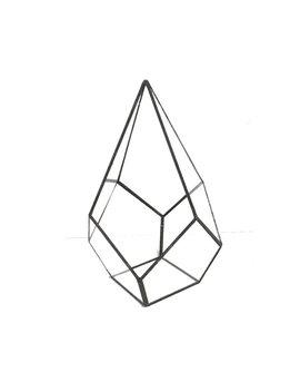 Wrought Studio Norton St Philip Tabletop Succulent Glass Terrarium & Reviews by Wrought Studio