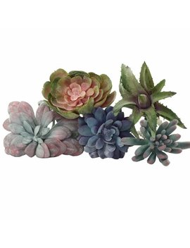 Bungalow Rose 5 Piece Artificial Flowering Succulent Set & Reviews by Bungalow Rose