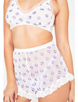 Dainty Daisy Embroidered Shorts by Sugar Thrillz