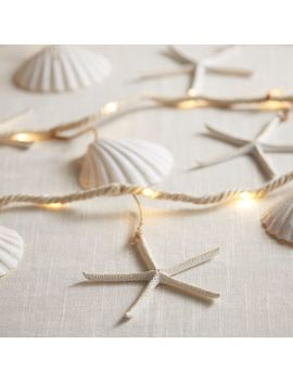 Rope & Shell 10' Glimmer Strings® by Pier1 Imports