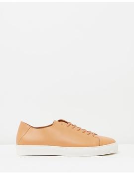 Doric Unbound Derby Shoes by Royal Republiq