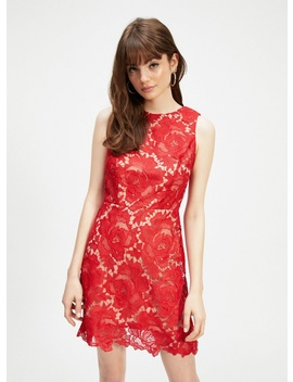 Red Lace A Line Shift Dress by Miss Selfridge