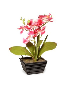 "12"" Pink Orchid Flower   National Tree Company by National Tree Company"
