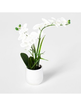 Artificial Orchid White/Green   Threshold™ by Threshold