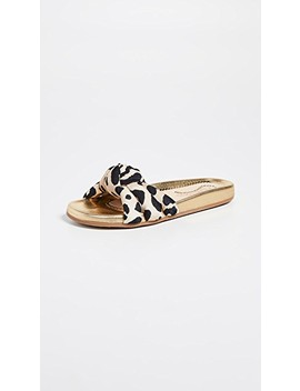 Dylan Slide Sandals by Charlotte Olympia