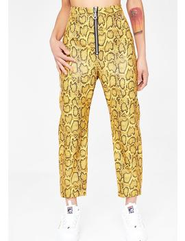 Cobra Pants by The Ragged Priest