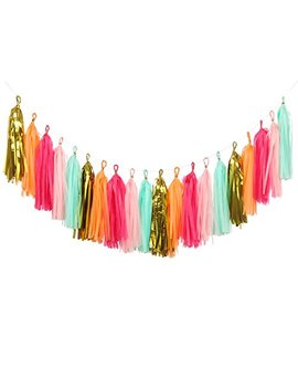 Ling's Moment 20 Pcs Tassel Garland Tissue Tassel Banner For Wedding, Bachelorette, Baby Shower, Birthday, Fiesta Party, Event & Party... by Ling's Moment