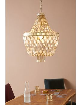 Oval Capiz Chandelier by Anthropologie