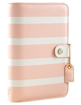 Webster's Pages Blush Stripe Color Crush Personal Planner Kit (Ccpk001 Bs) by Webster's Pages