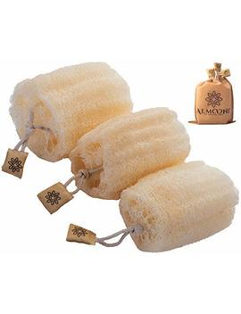 100 Percents Natural Organic Egyptian Loofah Sponges, Large Exfoliating Shower Loofah Body Scrubbers Buff Away Dead Skin For Smoother, More Radiant Appearance (3 Pack), Luxurious Packaging by Almooni