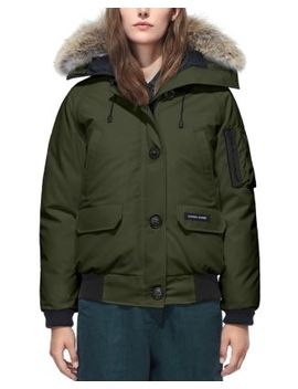 Chilliwack Fur Trim Bomber Jacket by Canada Goose