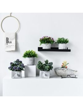 Accueil   Artificial Plant (Various Designs) by Accueil