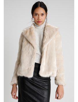 Short Jacket   Winterjacke by Miss Selfridge