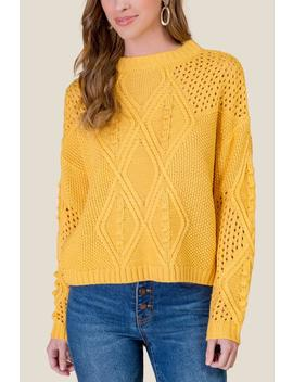 Mckenzie Pointelle Sweater by Francesca's