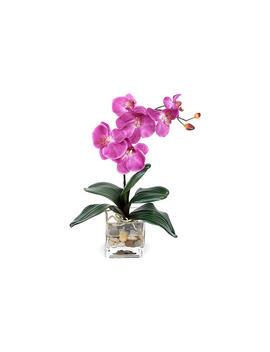 "18"" Fuchsia Orchid W/ Vase, Faux by One Kings Lane"