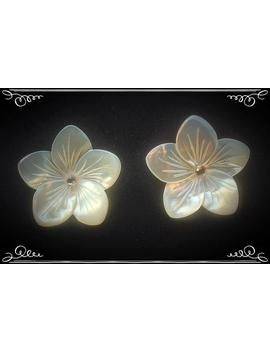 Pamela   White Mother Of Pearl Windy Weights Set by Etsy