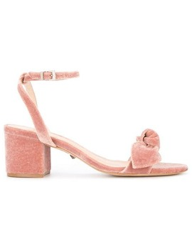 Bow Upper Velvet Sandals by Schutz