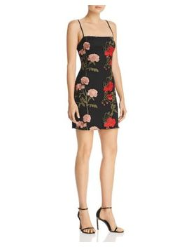Renee Embroidered Mini Dress by Donna Mizani