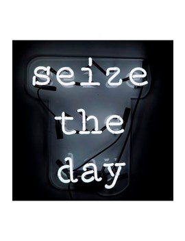 Seize The Day Neon Sign by Oliver Gal Gallery