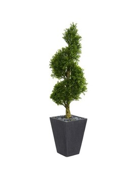 5ft Boxwood Spiral Topiary Artificial Tree In Slate Planter   Nearly Natural by Nearly Natural
