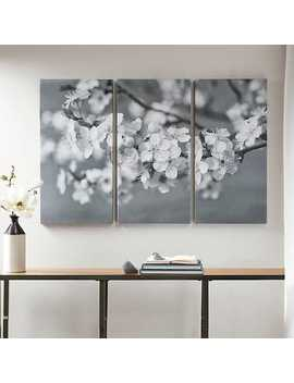 Branches In Bloom Canvas Art Prints, Set Of 3 by Kirkland's