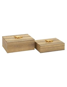 Dec Mode Alligator Decorative Box   Set Of 2 by Hayneedle