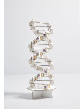 Crack The Genetic Code Dna Diy Kit by Modcloth