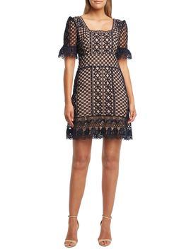Daisy Lace A Line Dress by Bardot