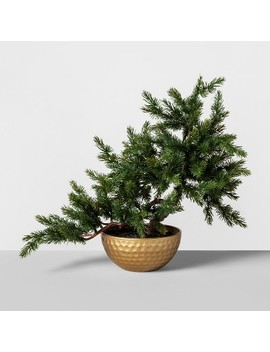 "16"" X 14"" Artificial Bonsai Tree Green/Gold   Opalhouse™ by Opalhouse"