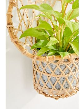 Ryland Planter Wall Basket by Urban Outfitters