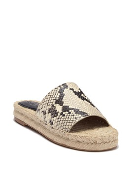 Claudia Lux Snake Embossed Slide Sandal by Coach