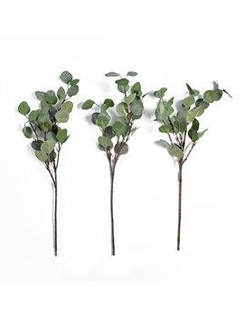 "Silver Dollar Eucalyptus Branches 27"" Faux Eucalyptus Three Piece Artificial Home Decor Faux Greenery Eucalyptus Branches Eucalyptus Leaves Fake Eucalyptus Branches Artificial Greenery Decor Wedding by Rural Aesthetic"