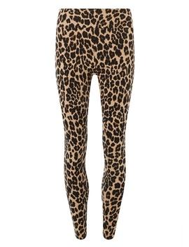 Brown Leopard Print Leggings by Dorothy Perkins