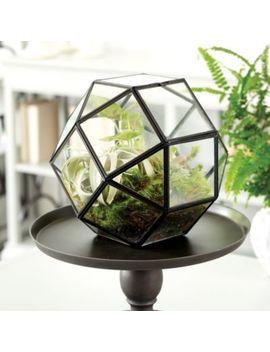 Geo Terrarium by Ballard Designs