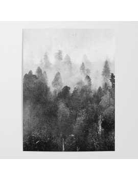 Forest Melody   Redwood National Park Poster by