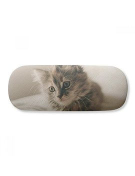 Animal Kitty Gray Cat Photograph Glasses Case Eyeglasses Clam Shell Holder Storage Box by Di Ythinker