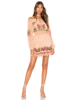 Calista Embroidered Dress by Tularosa