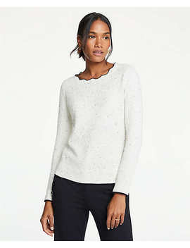 Scalloped Tipped Sweater by Ann Taylor
