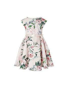 Monsoon   Pink 'carissa' Print Dress by Monsoon