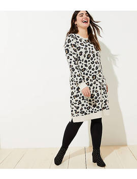 Loft Plus Leopard Sweater Dress by Loft